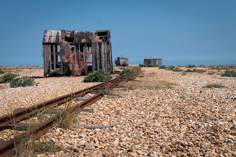 Dungeness_June2015_011.jpg