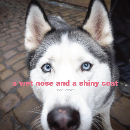 A Wet Nose and A Shiny Coat