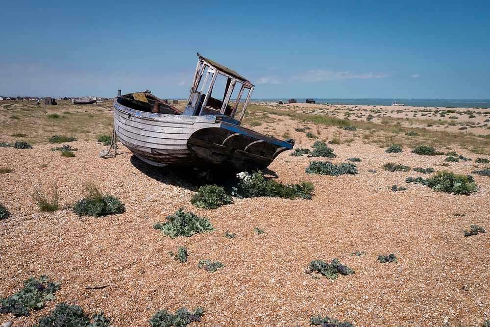Dungeness_June2015_015.jpg