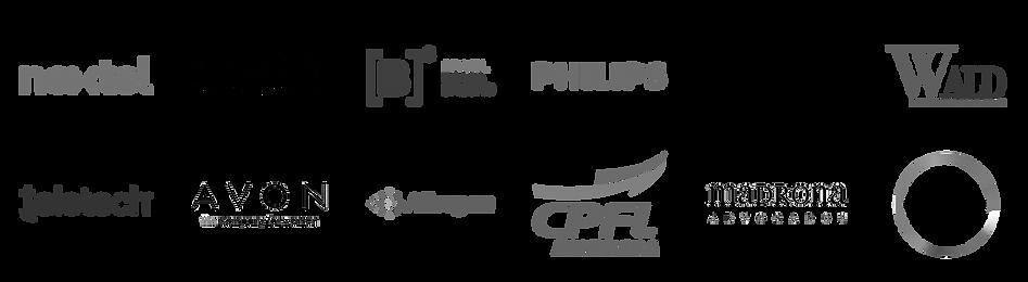 Nextel, BASF, Banco B3, Philips, Pirelli, Wald Advogados, Teletech, AVON, Allergan, CPFL, Madrona Advogados, Covestro