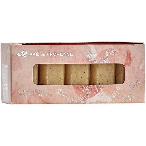 Honey Almond Gift Soap