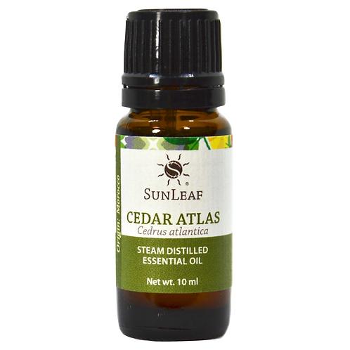 Cedar Atlas Essential Oil