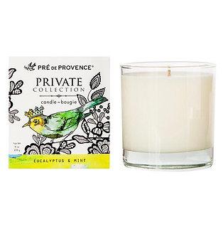 Eucalyptus & Mint Candle Energizing & Invigorating