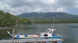 Mangrove Kubang Badak (21)