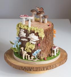 Tree Stump with mushrooms