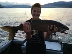 Lake Trout