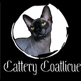 COATLICUE CATTERY.jpg