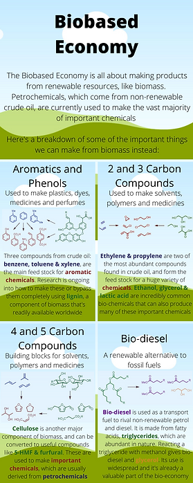 Biobased Economy.png