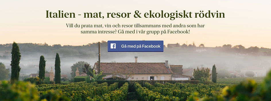 facebookruffino.jpg