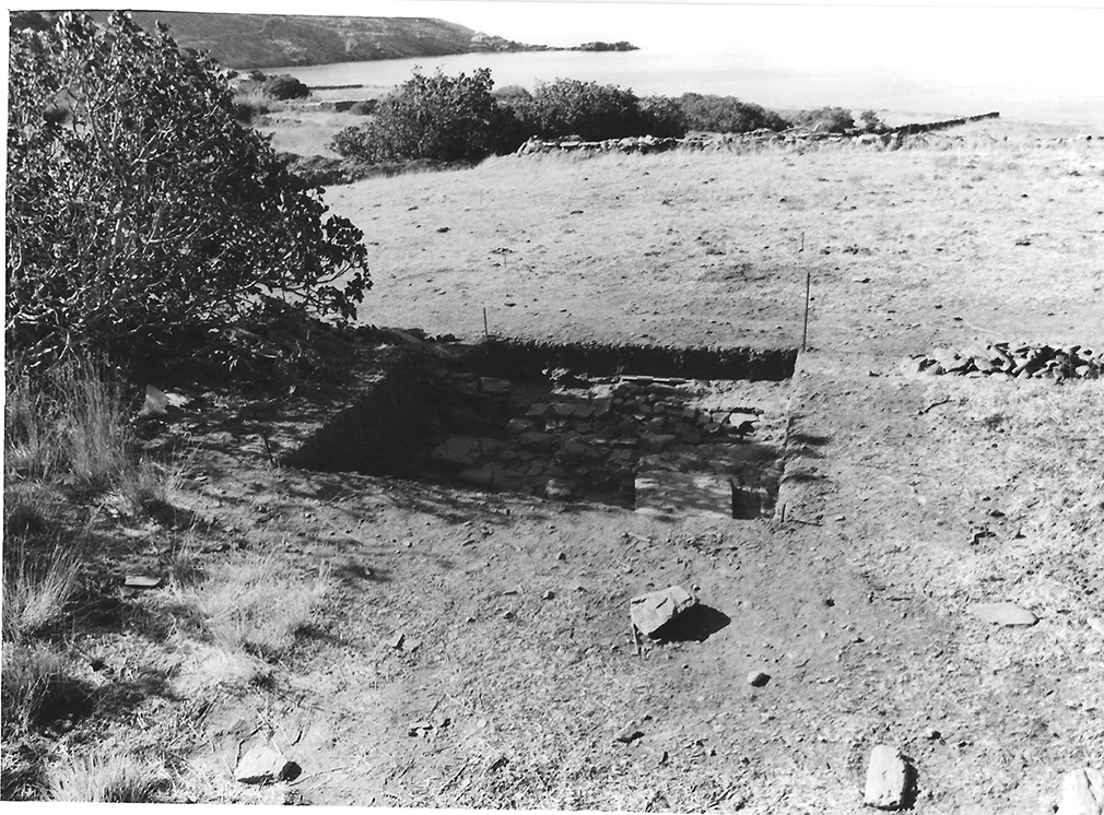 Ανασκαφή 1993, άνω άνδηρο