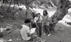 Επιφανειακή έρευνα, 1992