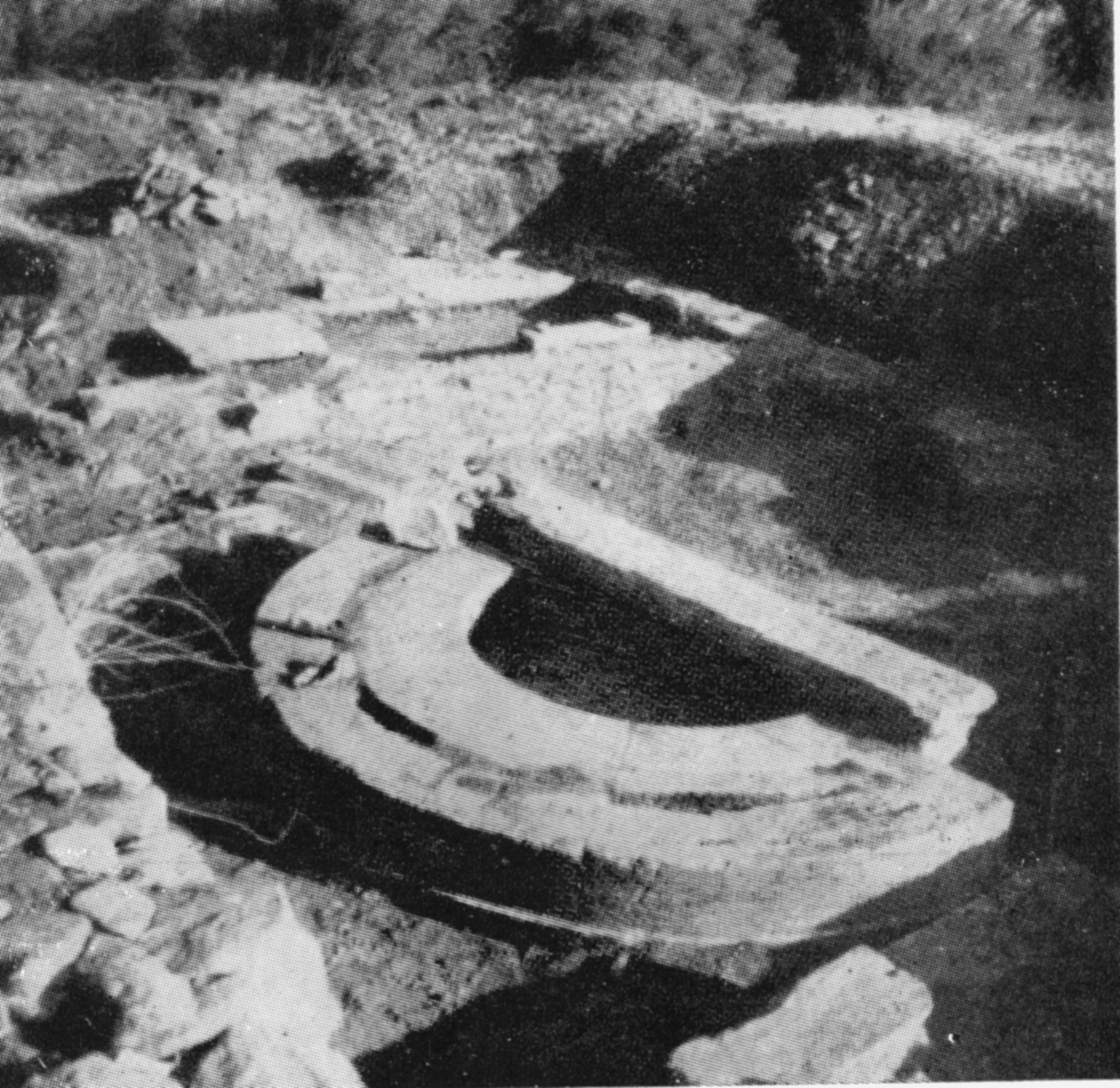 Ανασκαφή Ν. Κοντολέοντος. Κατάλοιπα εξέδρας μπροστά στη βόρεια στοά της αγοράς
