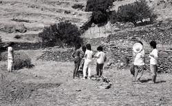 Ανασκαφή στου Πλάτου, 1988