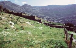 Άποψη  συγκροτήματος πέντε αναλημματικών τοίχων, περίπου στο μέσο της αρχαίας πόλης