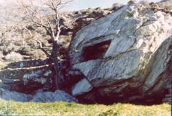 Κιβωτιόσχημος λαξευτός τάφος στο Δυτικό νεκροταφείο της αρχαίας πόλης