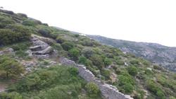 Άποψη του δυτικού σκέλους του τείχους της αρχαίας Άνδρου