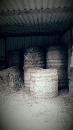 Bales in the Shed