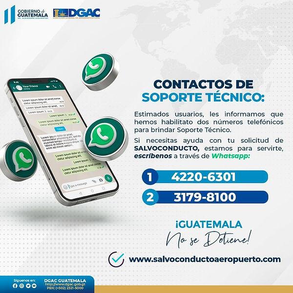 WhatsApp Image 2021-08-19 at 15.06.00.jpeg