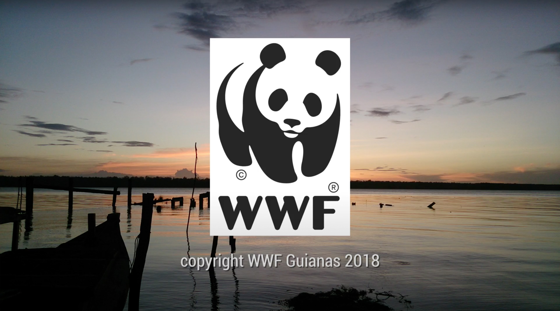 WWF Guianas