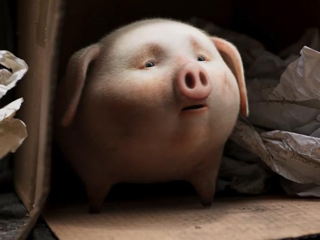 Santander 'Piggy'