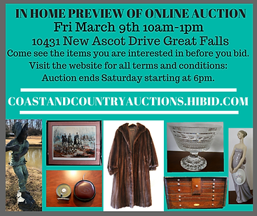 Live Auction Virginia