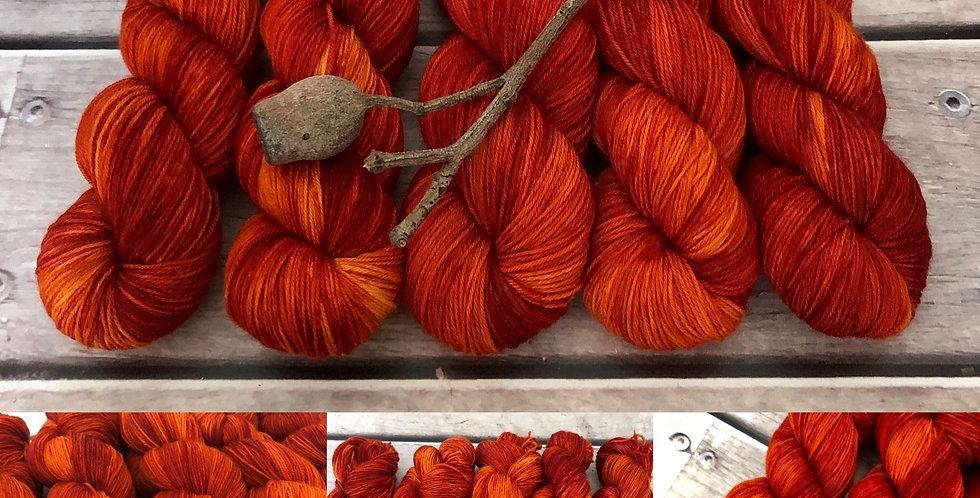 The Devil Went Down to Georgia - 4 ply sock yarn in merino & nylon