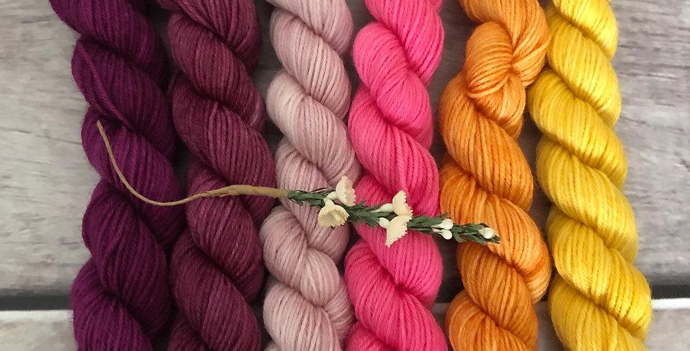 Spring Garden - gradient mini yarn set - merino/nylon -Mangosteen4