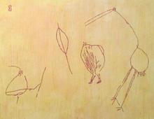 Bear Gulch bird study.jpg