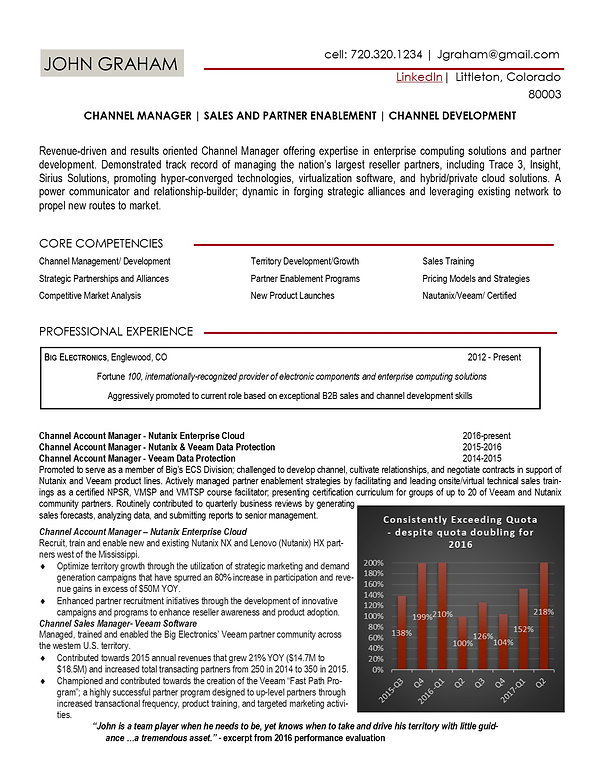 sales professional resume sample