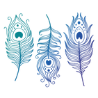 Feathericons-3.png