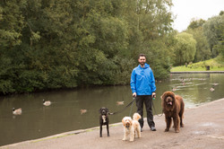 Dog Walker Wilmslow