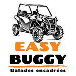 Logo EASY BUGGY 19'.png