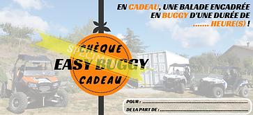 chèque cadeau buggy rzr polaris quad ssv balade location randonnée loisirs France Drôme collines évasion aventure nature 4x4 ardèche