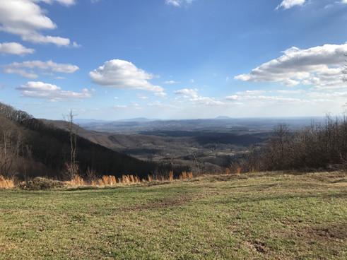 Pheasant Chase mountain view