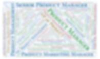 ProductCampRTP attenee job titles