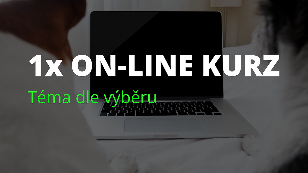 1x on-line kurz