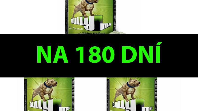 BULLY MAX - 180 DNÍ