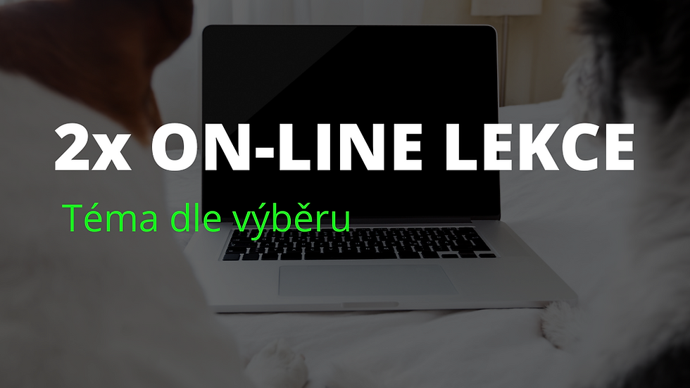2x on-line lekce