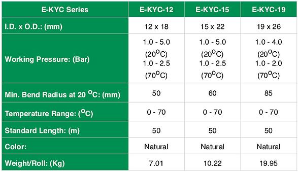 E-KYC Spec ENG.png