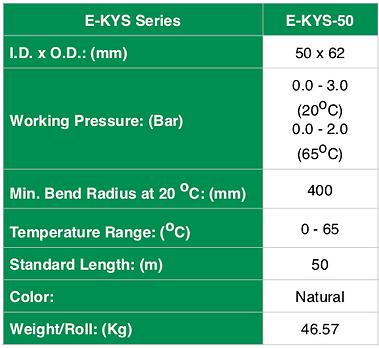 E-KYS - Spec ENG - 3.png