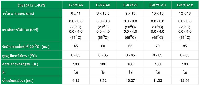 E-KYS - Spec THA - 1.png