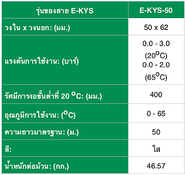 E-KYS - Spec THA - 3.png