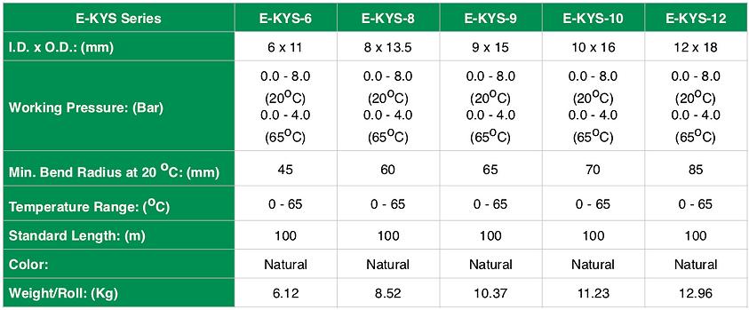E-KYS - Spec ENG - 1.png
