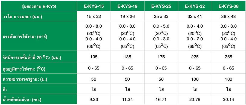 E-KYS - Spec THA - 2.png