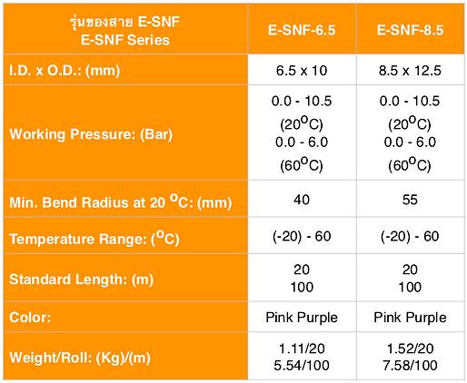 E-SNF Spec ENG.png