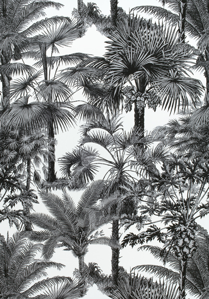 Palm Botanical Black F910102