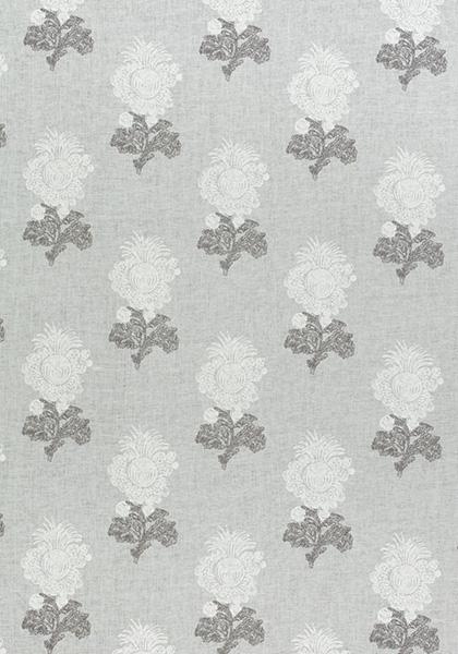 Aldith Grey F972605