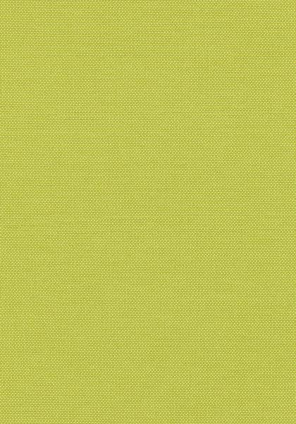Emery Spring Green W80226