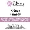 Kidney Remedy