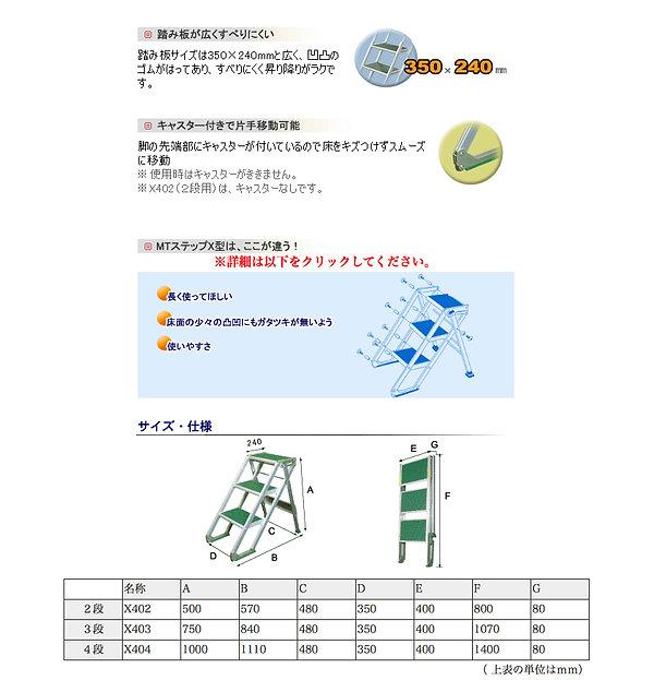 MT STEP X 2019010901.jpg